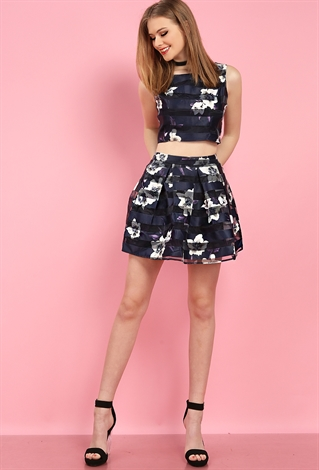 Striped Mesh Floral Print Skater Skirt