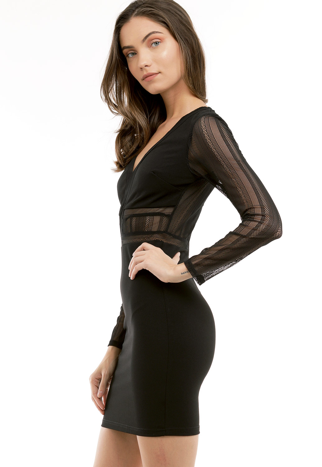 Sheer Long Sleeve Bodycon Dress