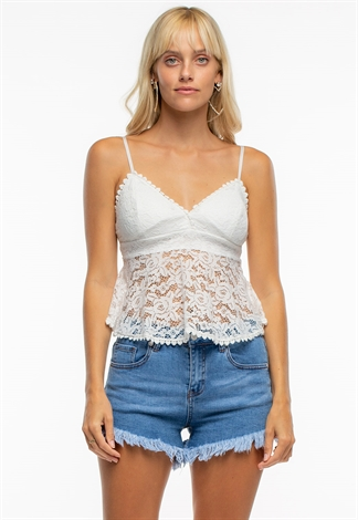 Sexy Lace Sheer Top With Back Zipper