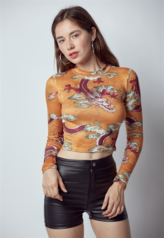 Dragon Graphic Top