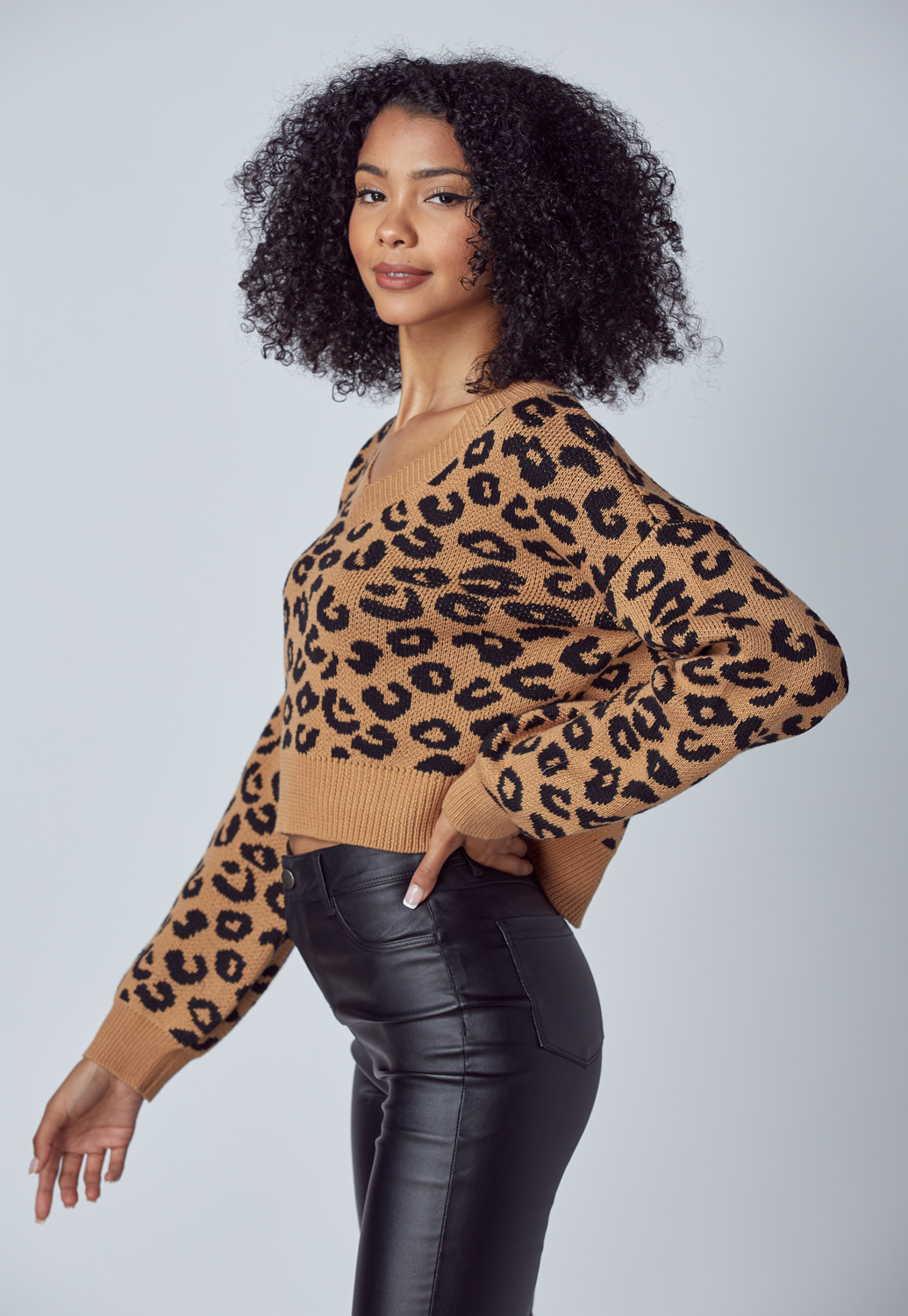 V Neck Leopard Knit Sweater