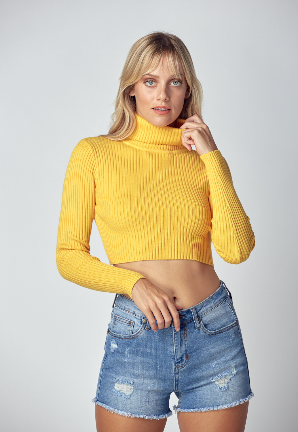 Turtleneck Crop Knit Sweater