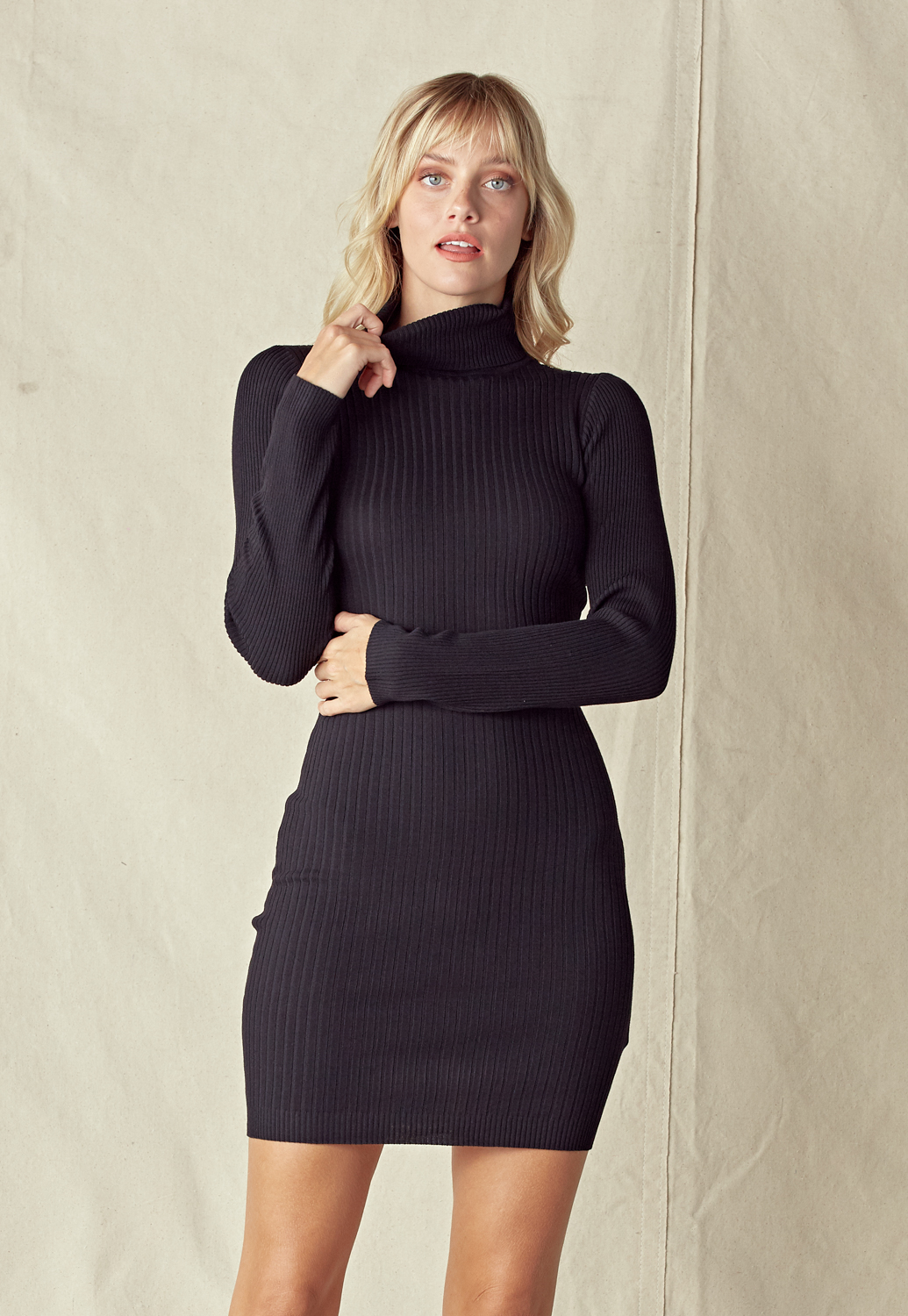 Turtleneck Rib Knit Dress